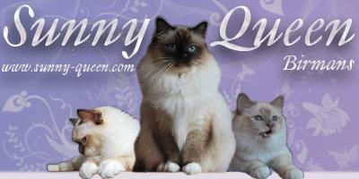 www.sunny-queen.com